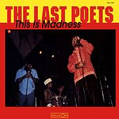 This Is Madness by The Last Poets