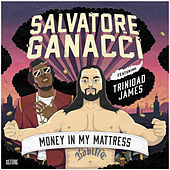 Money In My Mattress by Salvatore Ganacci