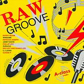 Raw Groove by Various Artists