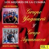 Lo Mejores de la Cumbia by Various Artists