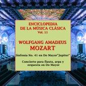 Enciclopedia de la Música Clásica Vol.11 by Various Artists