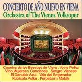 Concierto de Año Nuevo en Viena by Wiener Volksopernorchester