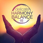 Delicate Harmony Balance, Vol. 2 by Various Artists