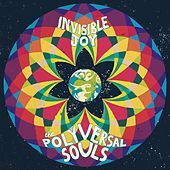 Invisible Joy by The Polyversal Souls