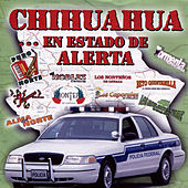 Chihuahua... En Estado de Alerta by Various Artists