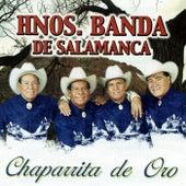 Chaparrita de Oro by Hnos. Banda de Salamanca