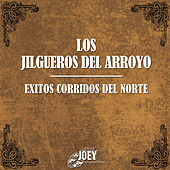 Exitos Corridos del Norte by Los Jilgueros Del Arroyo