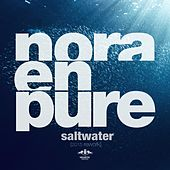 Saltwater (2015 Rework) by Nora En Pure