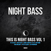 This is Night Bass Vol 1 by Various Artists