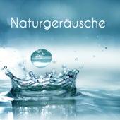 Naturgeräusche by Various Artists