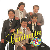 21 Exitos Vol. 2 by Los Caminantes