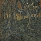 Skogslandskap by Vàli
