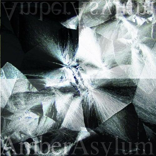 Still Point by Amber Asylum