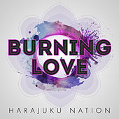 Burning Love by Harajuku Nation