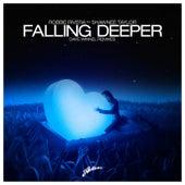 Falling Deeper (Dave Winnel Remixes) by Robbie Rivera
