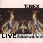 Total T.Rex, Vol. 4 by T. Rex