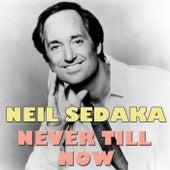 Never Till Now by Neil Sedaka