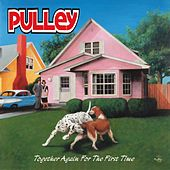 Together Again for the First Time by Pulley