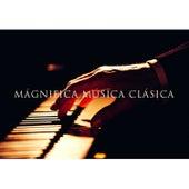 Magnifica Música Clásica by Various Artists