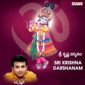 Sri Krishna Darshanam by Unni Krishnan