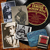 The Famous Hokum Boys by Various Artists