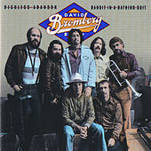 Reckless Abandon by David Bromberg