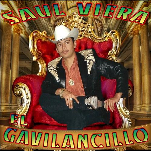 15 Exitos Con Banda von Saul Viera el Gavilancillo