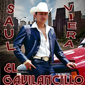 20 Exitos Inmortals by Saul Viera el Gavilancillo