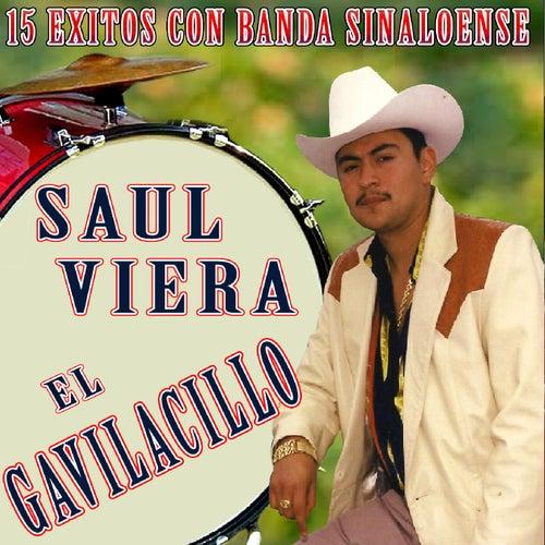 15 Exitos Con Banda Sinaloense von Saul Viera el Gavilancillo