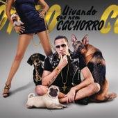 Uivando Que Nem Cachorro by Latino