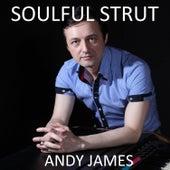 Soulful Strut by Andy James