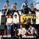 15 Exitos, Vol. 1 by Grupo Pegasso