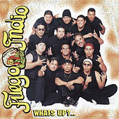 What's Up? by Fuego Indio