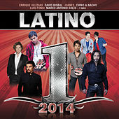 Latino #1´s 2014 von Various Artists