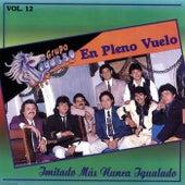 En Pleno Vuelo, Vol. 12 by Grupo Pegasso