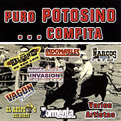 Puro Potosino... Compita by Various Artists