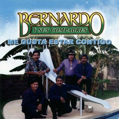 Me Gusta Estar Contigo by Bernardo y sus Compadres