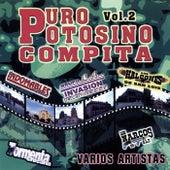 Puro Potosino Compita, Vol. 2 by Various Artists