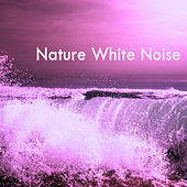Natural White Noise by Various Artists