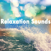 Relaxation Sounds by Various Artists