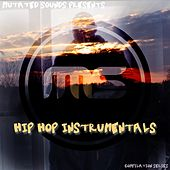 Hip Hop Instrumentals (Compilation Series) by Various Artists
