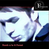 Numb C / W a Forest by The Freemasons