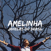 Janelas do Brasil by Amelinha