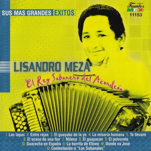 Sus Más Grandes Exitos by Lisandro Meza