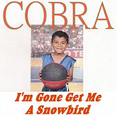 I'm Gone Get Me a Snowbird by Cobra