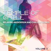 Temple of Chill, Vol. 2 (Relaxing Meditation and Chillout Songs) by Various Artists