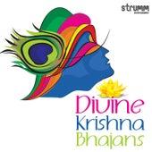 Divine Krishna Bhajans by Various Artists