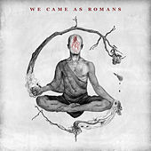 Tear It Down by We Came As Romans