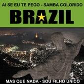 Brazil ... Ai Se Eu Te Pego (Samba Colorido) by Various Artists