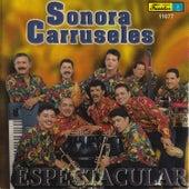 Espectacular by La Sonora Carruseles